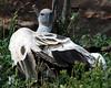 CMZ vulture 2822 al sh200