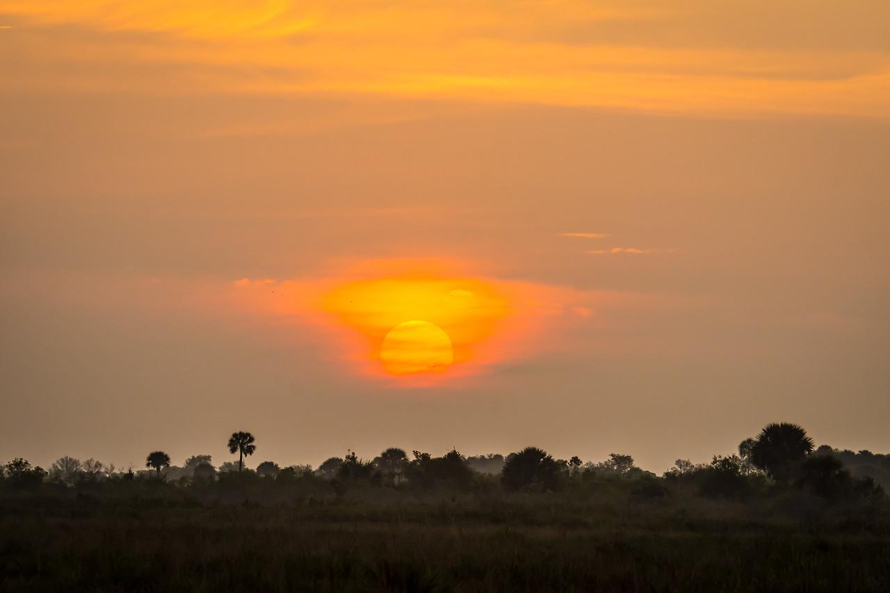 Sunrise in Kissimmee Prairie Preserve State Park