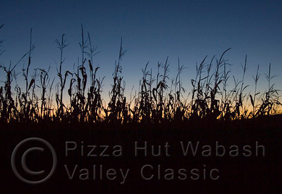 A cornfield is silhouetted against the night sky at sunset in central Illinois. Photos taken a few days before harvest