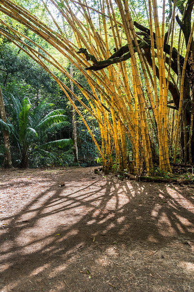 Caletas Reserve - Osa Peninsula