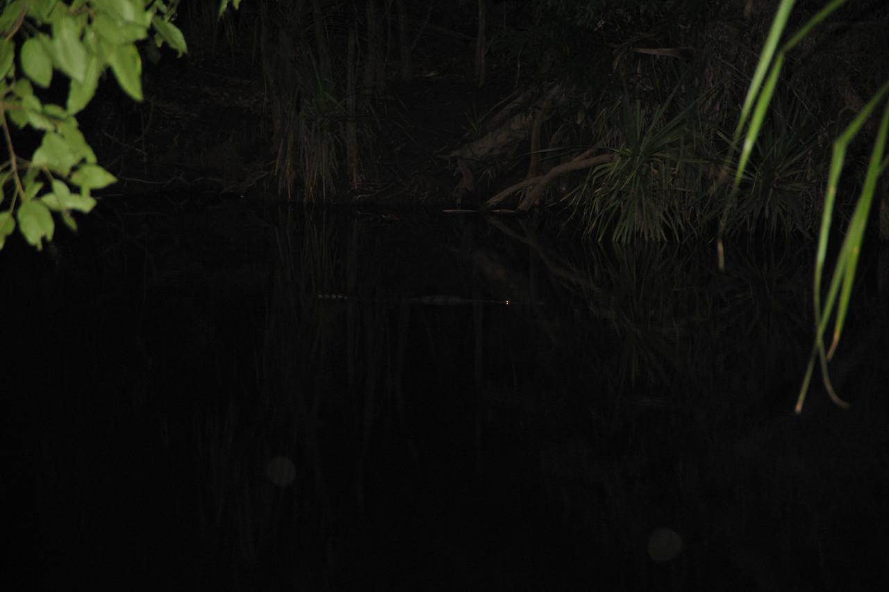 Waterhouse River, Elsey National Park