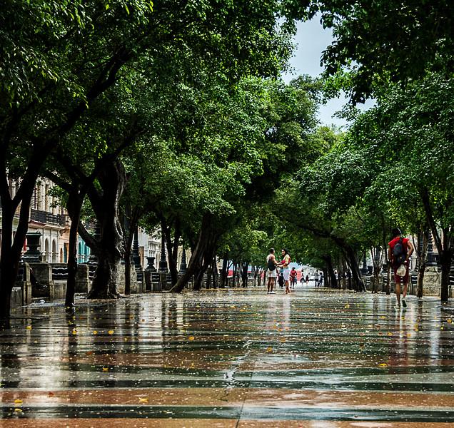 Old Havana - The Prado on a Rainy Day