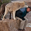 Dean Harrison, co-owner of Out of Africa, having fun with his wolves.  All of the animals there are very well taken care of and obviously happy.  This is a must see attraction, located in Camp Verde, AZ