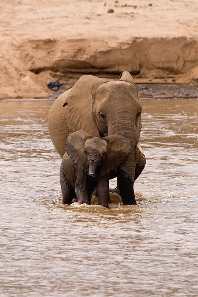 20100903_Samburu_0529