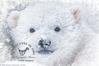 Polar Bear cub - digital painting