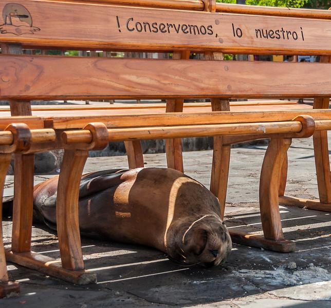 Day 2 San Cristobal Island - A visit to the Galapagos Interpreta