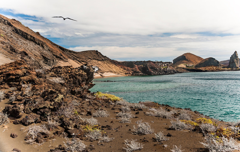 Day 4 Bartolome Island in the Galapagos Islands - Long 380 step