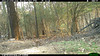 2012-03-01, 05 Backyard Wildlife-6