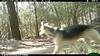 2012-03-01, 05 Backyard Wildlife-19