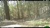 2012-03-01, 05 Backyard Wildlife-12