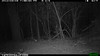 2012-03-01, 05 Backyard Wildlife-13