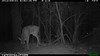 2012-03-01, 05 Backyard Wildlife-5