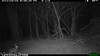 2012-03-01, 05 Backyard Wildlife-7