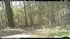 2012-03-01, 05 Backyard Wildlife-11