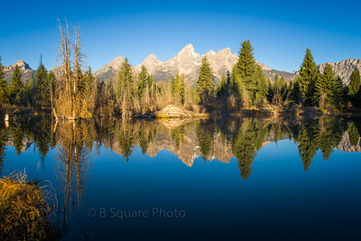 Beaver Lodge at Schwabacher's