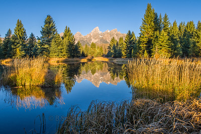 Tetons Reflection from Schwabacher Landing