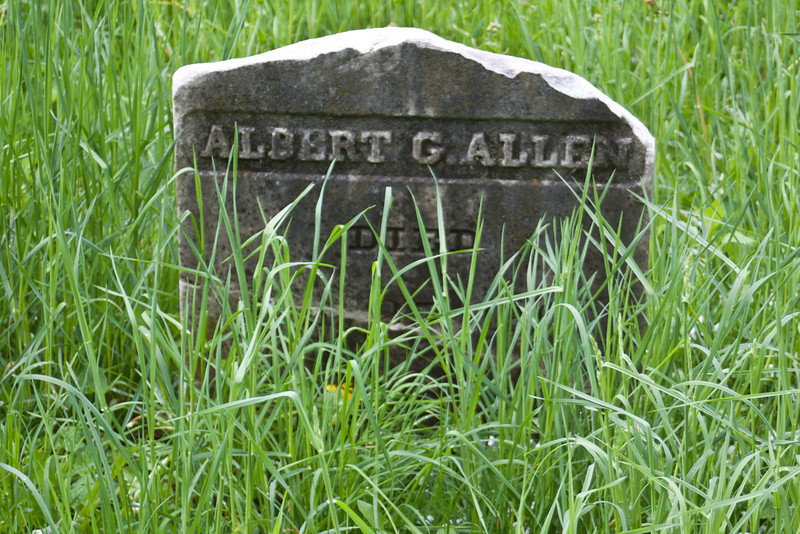 "A member of Vermont's famous ""Allen"" family.  Lost in the tall grass."