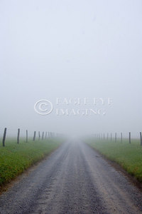 Traveling down a gravel road on a foggy morning in Tennessee