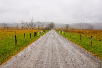 A muddy gravel road shortly after a thunderstorm in Tennessee
