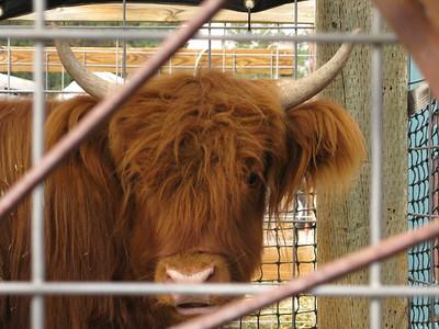 CO 2010 10 Lukes Farm 5