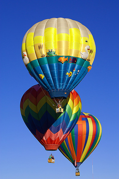 All the balloons are rising together, the sky is fiiled with color.