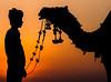 Thar Desert - Jaislamer