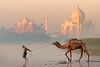 Taj Mahal at Sunrise