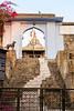 Watch Dog at Chittaurgarh Temple