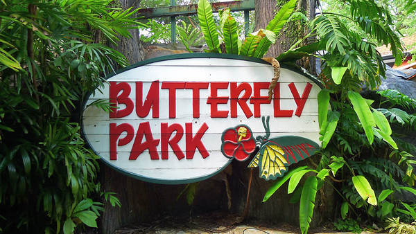 Butterfly Park & Insect Kingdom, Sentosa Island, Singapore, 2013