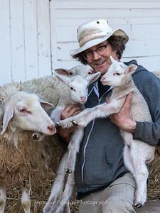 Lambs 13 April 2018-7023