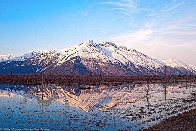 Portage - Reflection into Turnagain Arm