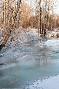 Anchorage - Far North Bicentennial Park in winter