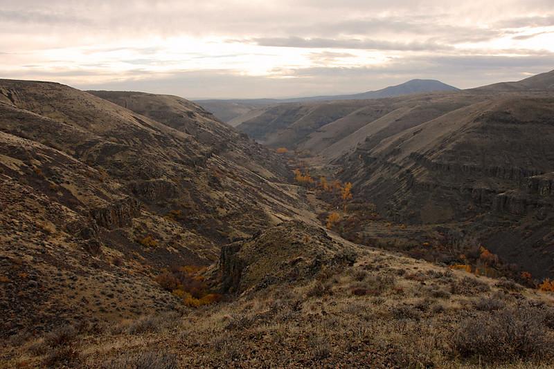 7370 Umtanum Canyon
