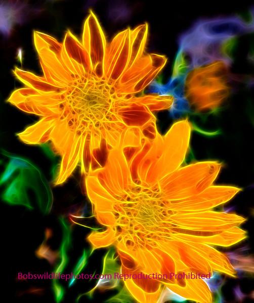 Yeelow Flower