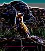 The origional photo of this red fox was taken in Yellowstone Park near Phantom Lake.