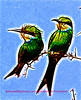 Pair of Bee-eaters