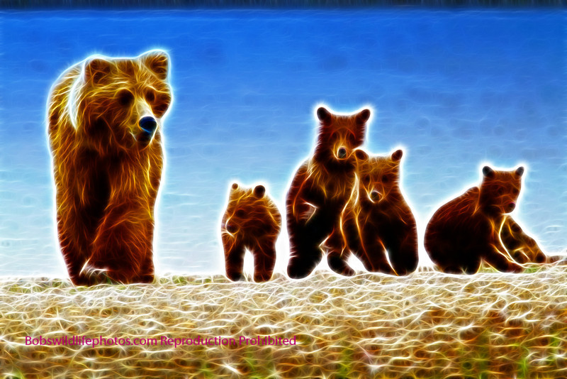 sow grizzly with 4 cubs