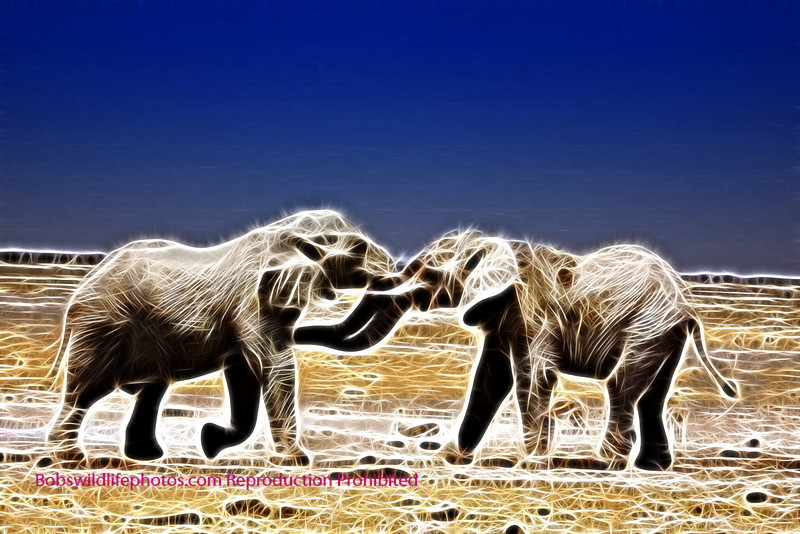 Sparking Elephants