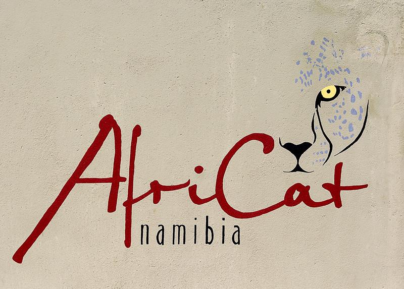 Africat Foundation & Camp- Okonjima