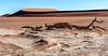 Namib-Nankluft Park - Deadvlei