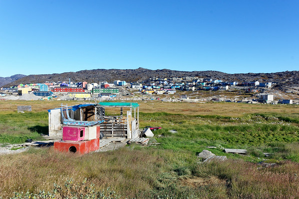 Looking across the common to the town of Ilulissat, with dog kennels and a dog sled in the foreground.