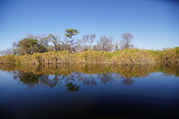 Clear, clean waters of the Okavango