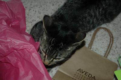 Sedona Bday 2009 (21)