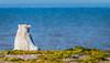 Polar Bear Gazing Over the Hudson Bay