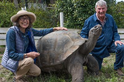 Richard and Twink Bumann with Sam the Galapagos Tortoise.  Sam is owned by Julian Duval.  Photo was taken at Quail Gardens Park at Encinitas.