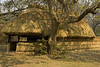 Hut at Tafika camp, South Luangwa, Zambia