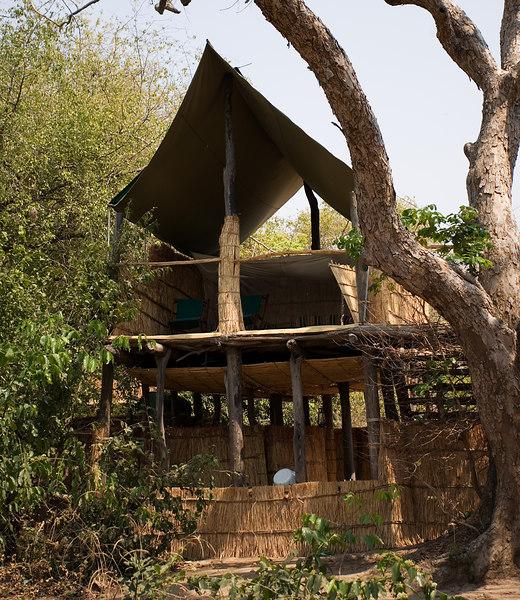 Chiko camp