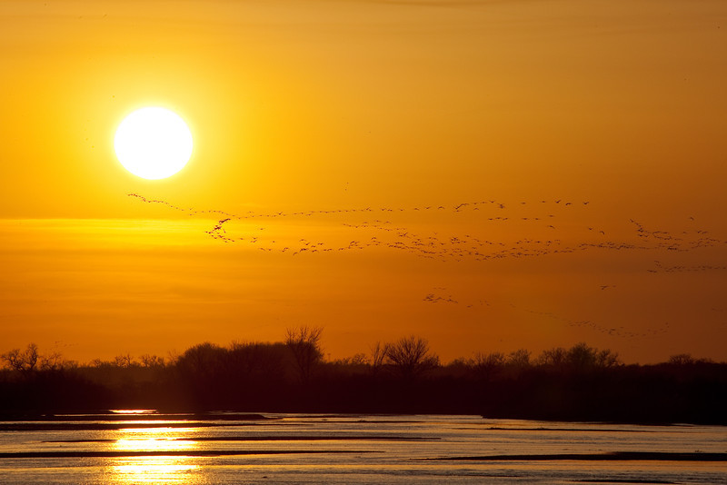 Sun Setting on the Platte <br /> <br /> Platte River <br /> Kearney, Nebraska <br /> (5II-11821)