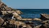 Yellow-footed Gull - Isla Santa Catalina - Gulf of California (AKA Sea of Cortez)