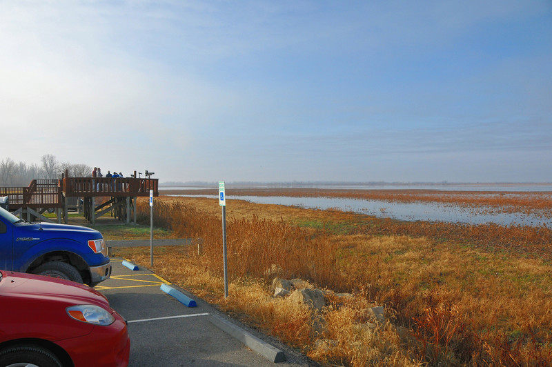 The sund broke through the heavy fog as we arrived at the Squaw Creek Wildlife Refuge.